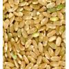 Organic Brown Short Grain Rice