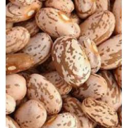 Organic Pinto Beans 500g